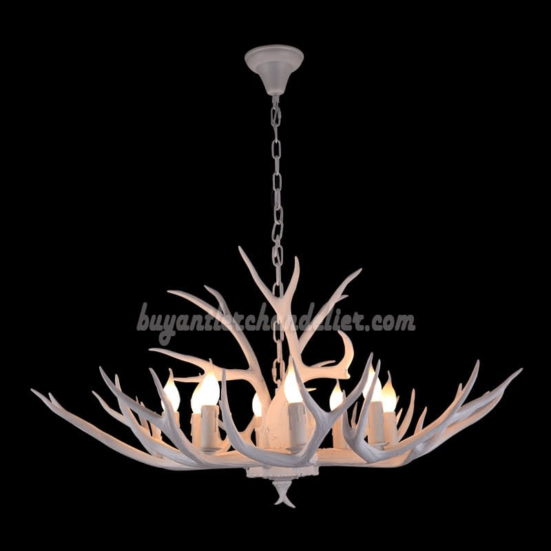 8 Whitetail Deer Antler Chandelier Pure White Ceiling